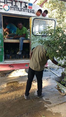 bus-haiti-trees_0002_IMG-20170127-WA0003.jpg